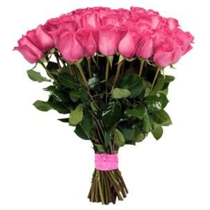 Розы Голландия розовые